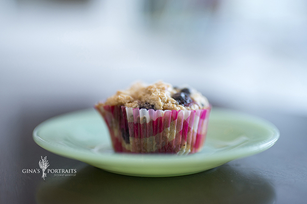 Roxy's Best Blueberry Muffin - fav plate