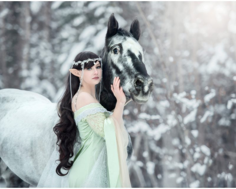 Model dressed as a Elve winter shoot in the trees with black and white horse